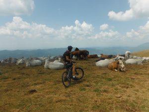 percorsi sul Monte Catria